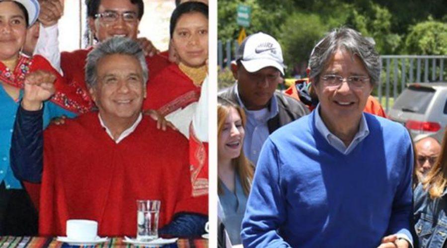 Encuesta Cedatos: Moreno encabeza intención de voto con 52,4%
