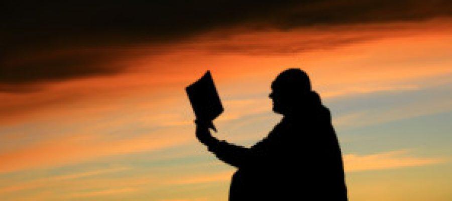 El lector incansable