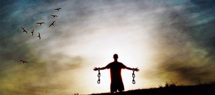 Cuestión de libertad