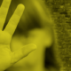 Comisión AAMPETRA establece responsabilidad ante delitos sexuales
