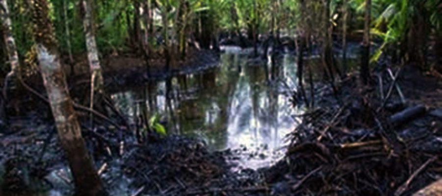 Justicia para la Amazonía ecuatoriana