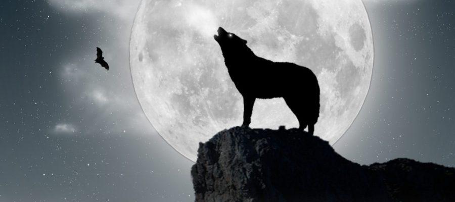 Restauración conservadora y el cuento del lobo