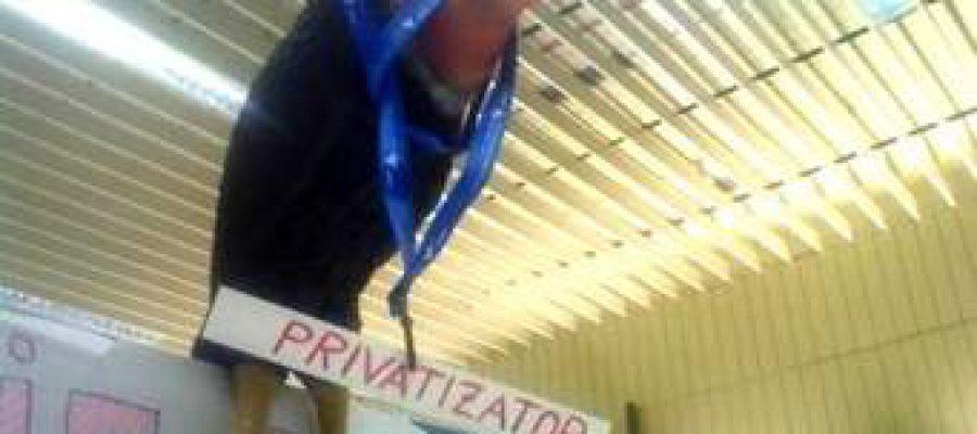 Flexibilizadores y privatizadores