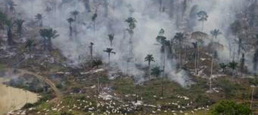 Incendio amenaza al «pulmón del planeta»