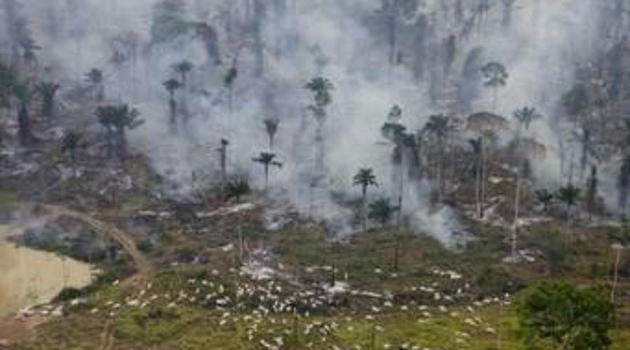 """Incendio amenaza al """"pulmón del planeta"""""""