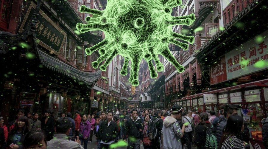 Las siete plagas que destapó el coronavirus
