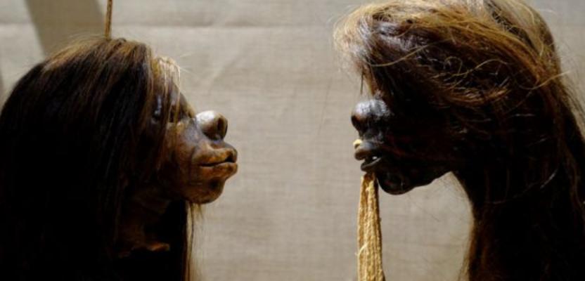 Muestras tsántsicas shuars eliminadas de museo británico