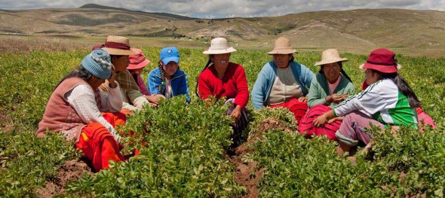 La mujer: pilar del desarrollo agrario.