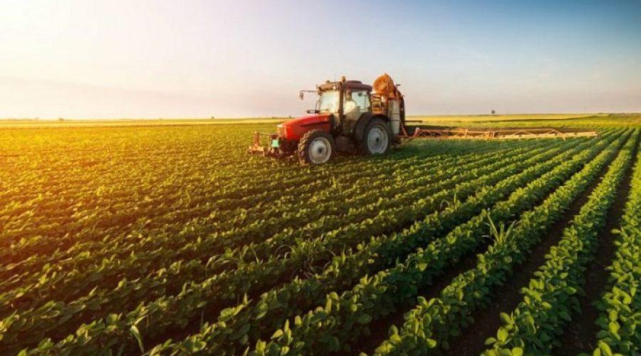 Sin agricultura no hay paraíso
